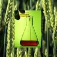 """""""This Brave New World of Frankenfoods is frightening. Today, nearly 80 percent of all processed foods containing corn, soy, or canola oil contain unlabeled genetically altered ingredients...."""""""